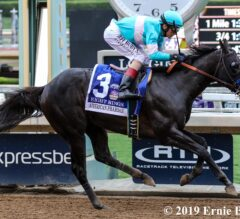 Eight Rings Answers the Call in American Pharoah