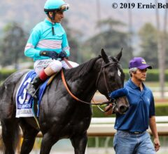 Eight Rings Tops Strong Cast of TVG Juvenile Pre-Entries