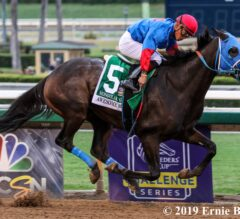 Mongolian Groom Invades Awesome Again Winner's Circle