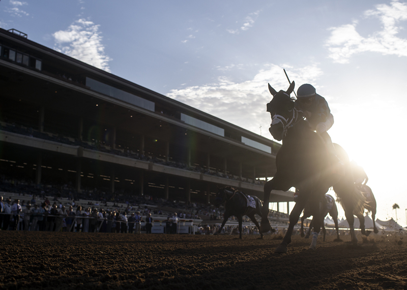 Del Mar Closes 80th Summer Meeting as 'Safest Racetrack' in US