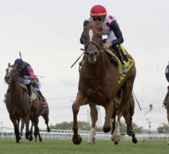 Old Chestnut Airs Out in Ontario Racing
