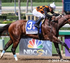 Paradise Woods Powers Away in Zenyatta