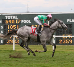 Pure Sensation Captures Fourth Turf Monster