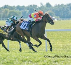 Totally Boss Takes Charge Late in Runhappy Turf Sprint