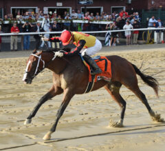 Several Top 3-Year-Olds Anticipated for Oaklawn Stakes