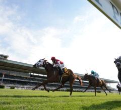 Saturday's $1 Million Jockey Club Derby Offers Berth to Breeders' Cup Longines Turf