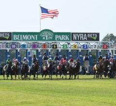 Ballydoyle Contingent Arrive At Belmont Park For Turf Triple Series