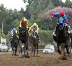 2019 Breeders' Cup Predictions #5: Wide-Open Classic Division