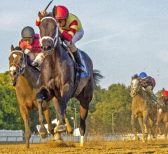 Meadow Dance Earns First Stakes Win in $100,000 Weather Vane