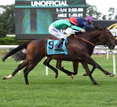 Spanish Mission Invades Jockey Club Derby Winner's Circle