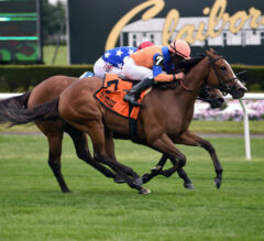 Turf War Wins Battle with Deep-Stretch Surge in Christiecat