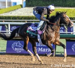 Bricks and Mortar Attempts to Lock up Horse of the Year in Longines Turf