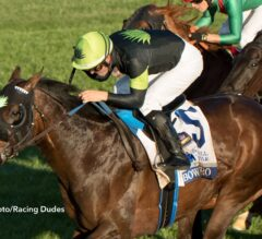 Bowies Hero Bounds Home in Shadwell Turf Mile