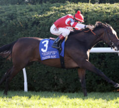 Cambier Parc Too Quick in QEII Challenge Cup