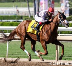 Racing Dudes Three Stars of the Week: Leucothea Shines in Desi Arnaz Stakes