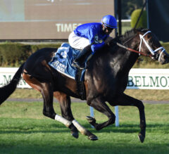 Lucullan rallies late to win first career graded stakes in Knickerbocker