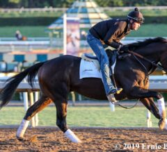 Malibu Stakes Preview: Final Grade 1 of 2019