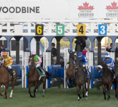 Woodbine Announces Preliminary Plans to Resume Live Racing; Queen's Plate Possible for September