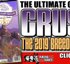 Racing Dudes 2019 Breeders' Cup Wagering Guide and Picks Released