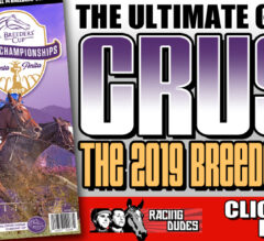 Racing Dudes 2019 Breeders' Cup Wagering Guide and Picks Presale