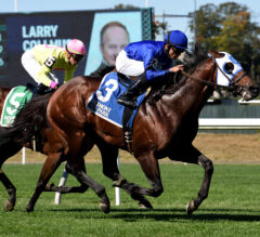 Final Frontier Wins Belmont Turf Sprint