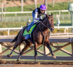 McKinzie Ready to Bounce Back in Longines Classic