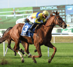 Red Knight Prevails in $100k Point of Entry