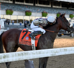 Tiz the Law Lays it Down in Champagne