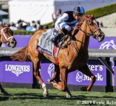 Sharing was Spectacular in Juvenile Fillies Turf