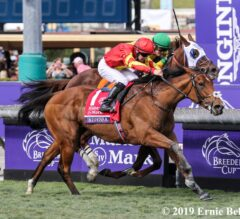 Iridessa Shines in Filly and Mare Turf