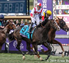 Bricks and Mortar Stays Perfect with Breeders' Cup Turf Win