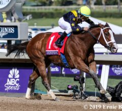 Covfefe's Talent Not Fake News in Filly & Mare Sprint