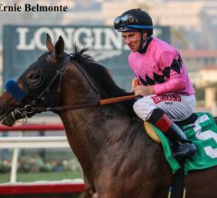 High Velocity Outguns Strongconstitution in Bob Hope