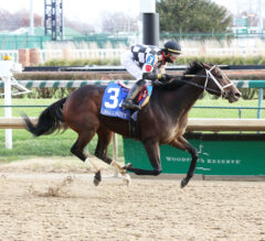 Mylady Curlin Wins Sixth of the Year in Falls City
