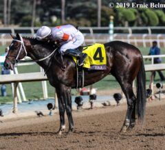 Racing Dudes Three Stars of the Week: Stars of the Cup