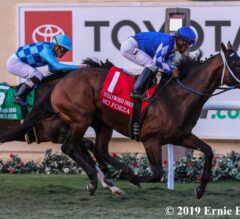 Mo Forza Reaches Superstar Status in Hollywood Derby
