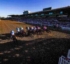 What's Next? Looking Ahead at Horse Racing's Summer Calendar