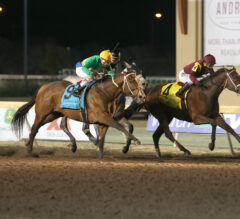 Class Lifts Shoplifted to Springboard Mile Victory
