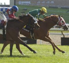 Winning Momentum Continues for Attard and Da Silva