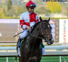 Omaha Beach Draws Post 5, Named 7/5 Favorite for Pegasus World Cup