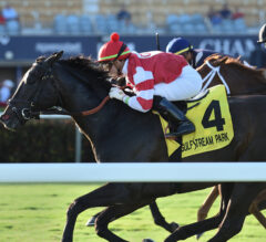 Fort Marcy Preview: Dual Graded Stakes Winner Instilled Regard Headlines Chad Brown-Trained Foursome