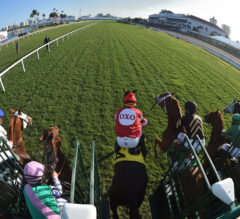 Pegasus World Cup Turf Preview: Wide-Open Field Set for Big Event