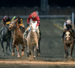 Bettors Unimpressed, 'All Others' Heavy Favorite in Kentucky Derby Future Wager Pool 1