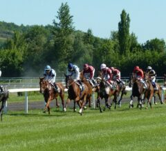 What New Features Will Come to Prominence on Horse Racing Betting Sites in 2020?