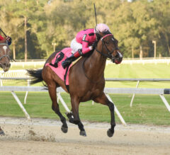Two Sixty Holds Sway Late in Gasparilla