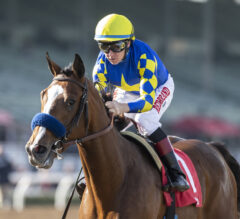 Racing Dudes Three Stars of the Week: Authentic Derby Contender