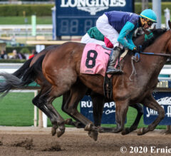 Fast Enough Exactly That in California Cup Derby