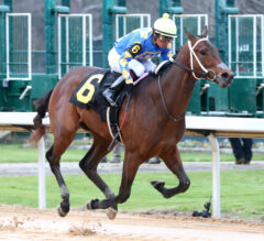 Southwest Stakes Preview: Asmussen Loaded With Entries