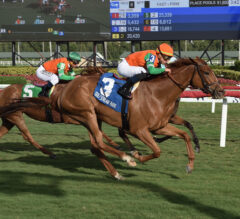 Magic Star Prevails in Marshua's River