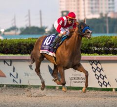 Mucho Gusto Crushes Pegasus World Cup
